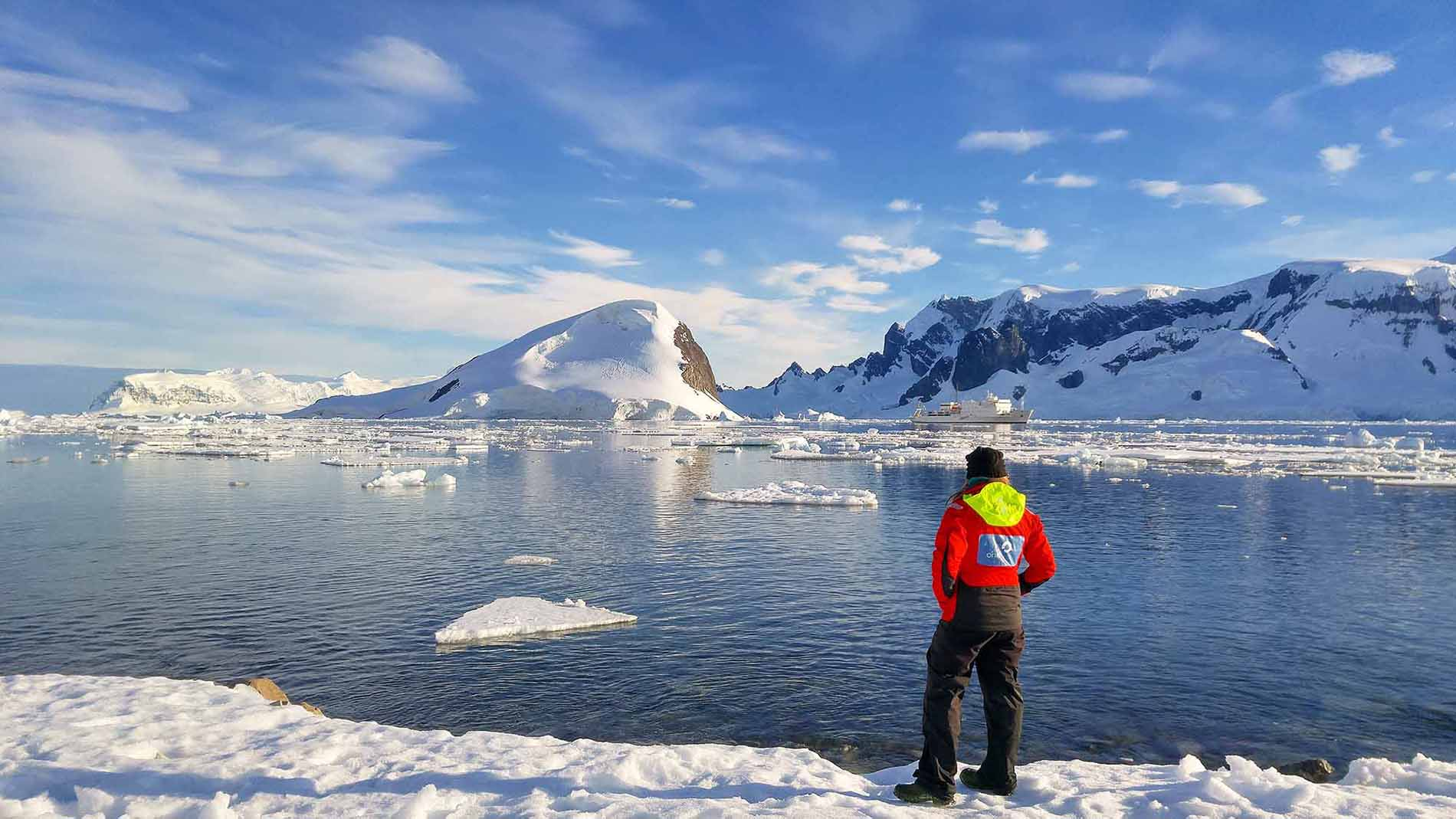 The 5 types of people who visit antarctica the lost girl for Can i go to antarctica