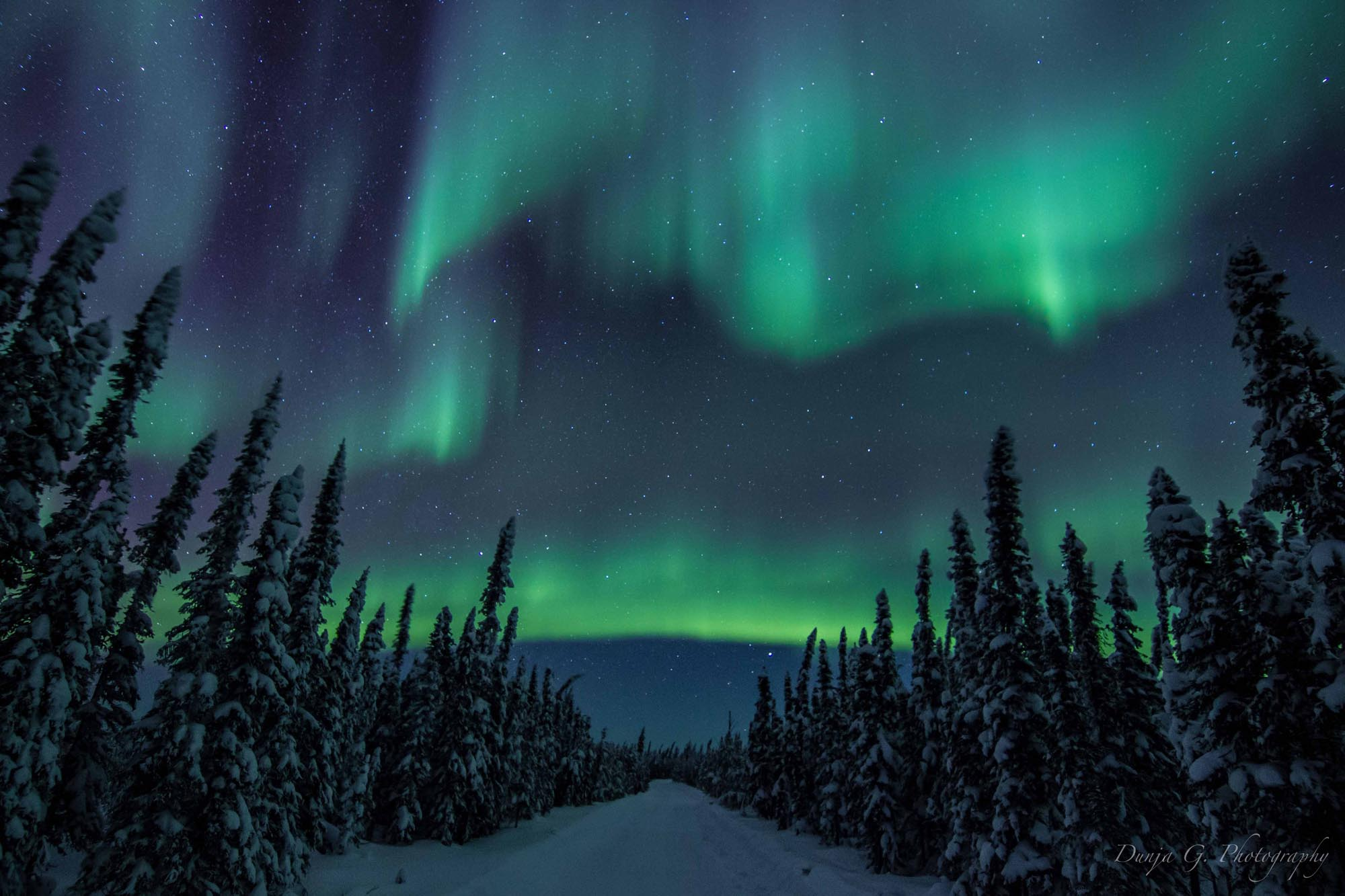 30 of the Most Spectacular Northern Lights Photos From ...